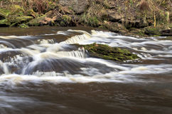 Eller Beck tumbling through Thomason Woods, Beck Hole Royalty Free Stock Image