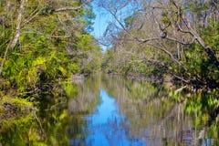 Ellie Schiller Homosassa Springs Wildlife-Nationalpark stockfotografie