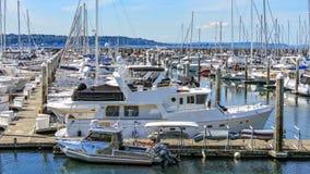 Elliot Bay Marina royaltyfri bild