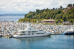 Elliot Bay Marina immagine stock