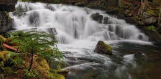 Elliot Creek, Washington State Stock Photos