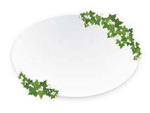 Ellipse banner with ivy Stock Image