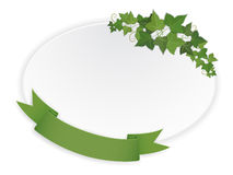 Ellipse banner with ribbon and vine Stock Photos