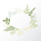 Ellipse floral frame, leaves decoration vector Stock Photography