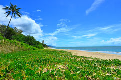 Ellis beach in Cairns Queensland Australia Stock Photos