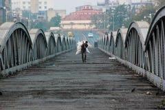 Ellis brige: Arvstruktur, Ahmedabad, Indien Fotografering för Bildbyråer