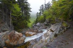 Ellis River i New Hampshire Royaltyfri Bild