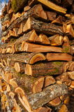Elm firewood royalty free stock images