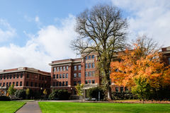 Elm and maple trees are part of the landscape around Strand Agriculture Hall on the Oregon State University campus, Corvallis. Corvallis, Oregon, Nov 11, 2015 stock photography