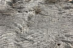 Elm wood board texture 1. Elm wood board texture, old wooden plank Ulmus procera stock photos