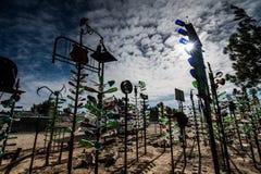 Elmers ranch för flaskträd på Route 66 Royaltyfria Foton