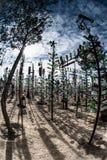 Elmers ranch för flaskträd på Route 66 Royaltyfri Fotografi
