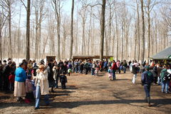 Elmira Maple syrup festival Royalty Free Stock Photography