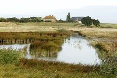 Elmley RSPB Reserve, Kent Stock Photo