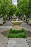 Elmwood Park. Roanoke, VA – May 13th: Fountain row with decorative tree located in Elmwood Park located in Roanoke, VA on May 13th, 2017 stock photo