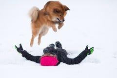 Elo狗在雪的一个女孩跳 免版税库存图片