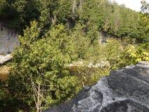 Elora Gorge Lizenzfreie Stockbilder