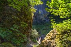 Elowah秋天足迹在哥伦比亚河峡谷 免版税库存图片