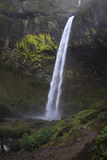 Elowah cai no desfiladeiro do Rio Columbia Imagens de Stock Royalty Free