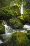 Elowah Falls Royalty Free Stock Photos