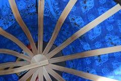 Elphy azul Imagenes de archivo