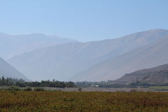 Elqui dal, Chile Fotografering för Bildbyråer