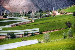 Elqui Valley, Andes part of Atacama Desert Royalty Free Stock Photos