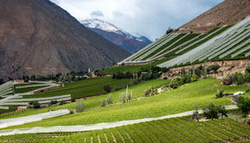 Elqui Valley, Andes part of Atacama Desert Stock Image