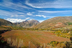 Elqui Valley in northern Chile Royalty Free Stock Photo