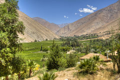 Elqui valley. View over the Elqui valley in Chile Royalty Free Stock Photo