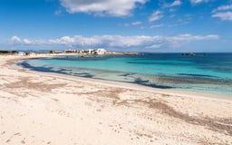 Els Pujols strand i den Formentera ön Fotografering för Bildbyråer