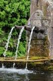 Elsass, ein malerischer alter Brunnen in Hunawihr Stockbild