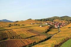 Elsassisk by i vingården Arkivfoto