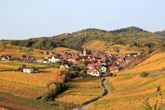 Elsassisk by i vingården Arkivbild