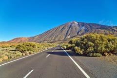 对火山的黄雀色el海岛路teide tenerife 免版税库存图片