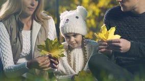 Eltern, die mit Tochter im Herbstwald spielen, zusammen Spaß scherzen und haben stock video