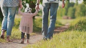 Eltern zusammen mit ihrer kleinen Tochter gehen entlang den Weg unter den Bäumen und nehmen das Kind durch die Hand einheit stock video footage