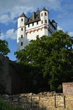 Eltville castle. Castle of Eltville Rheingau Germany Royalty Free Stock Images