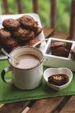 Eluda las galletas del brownie con el penut y el queso que llenan de cacao en la taza foto de archivo libre de regalías