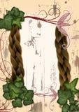 elven神仙的框架常春藤 库存图片