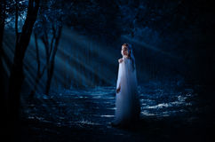 Elven dziewczyna w lesie Zdjęcia Royalty Free
