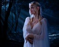 Elven dziewczyna w noc lesie Obraz Royalty Free