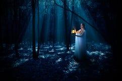 Elven dziewczyna z lampionem przy noc lasem Obrazy Stock