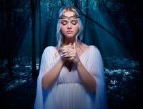 Elven flicka i nattskog Royaltyfri Bild