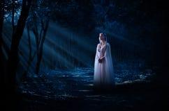 Elven flicka i nattskog Arkivfoto