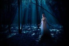 Elven flicka i skogen Arkivbild