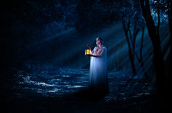 Elven girl with lantern in night forest Royalty Free Stock Image