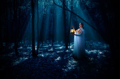 Elven girl with lantern at night forest Stock Images