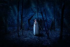 Elven girl in night forest Royalty Free Stock Photos