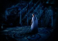 Elven girl in night forest Royalty Free Stock Image